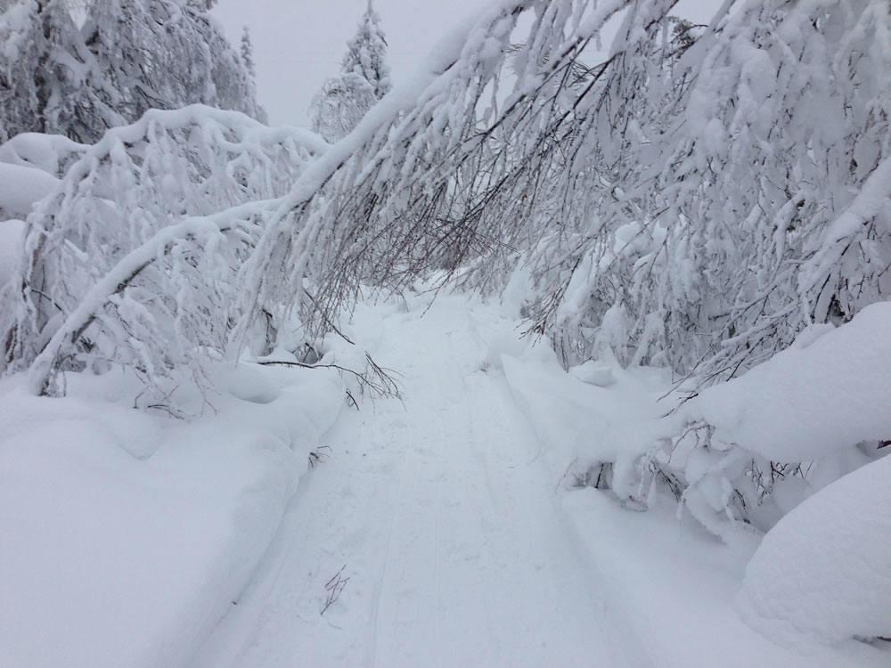 Finlande Rovaniemi 2013